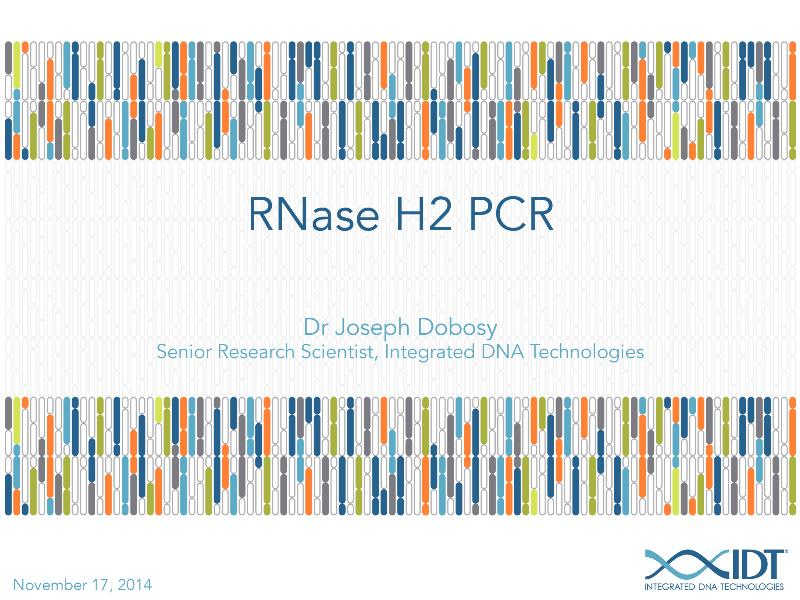 RNaseH2PCR